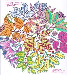 Secret Garden by Johanna Basford   #SecretGarden #JohannaBasford #ColoringProject
