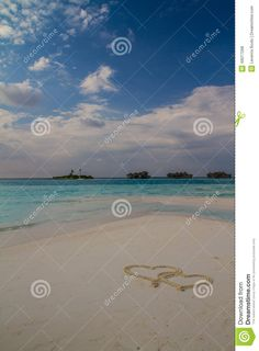 Summer vacation concept, beautiful blue lagoon in Indian ocean, exotic island with tropical palm trees, wonderful landscape of Maldives. Tropical Maldives island - nature travel background.