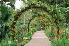 Bogor botanical gardens - brom arch