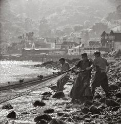 Fred Lyon…..Herring Fishermen, Sausalito, California, 1955