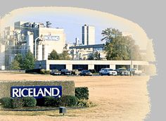 Riceland Rice has been located and headquartered in Stuttgart, Arkansas since 1921. Riceland Rice is the world's largest rice miller and rice marketer.