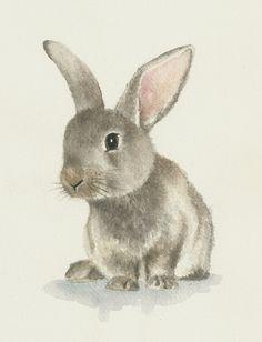 Rabbit watercolor, original bunny painting di Ddrawings su Etsy by robert Animal Paintings, Animal Drawings, Cute Drawings, Easter Drawings, Drawing Animals, Rabbit Drawing, Rabbit Art, Bunny Painting, Painting & Drawing