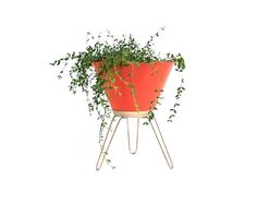 Vintage Bullet Planter Mid Century Modern Furniture Space Age Atomic Hairpin Legs Orange Plant Stand Fiber Glass Planter Retro Home Decor on Etsy, CHF 166.05