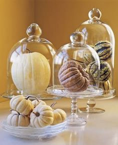 fun for Fall - cloches or apothecary jars with pumpkins
