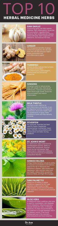 Herbal Medicine & the Top 10 Herbal Medicine Herbs - Dr. Axe natural remedies The Top 10 Herbal Medicine Herbs Natural Health Remedies, Natural Cures, Natural Healing, Herbal Remedies, Holistic Remedies, Holistic Healing, Healing Herbs, Medicinal Plants, Herbal Plants