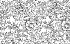 Ornate flower pattern Vector | Free Download