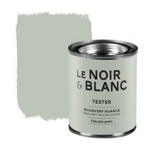 Le Noir & Blanc muurverf nuance pale jade green 100 ml
