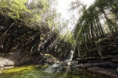 Frank C. Grace (Trig Photography) posted a photo:  Thousands of Years in the Making  Sabbaday Falls  New Hampshire  May 4th, 2017  Sabbaday Falls is one of the most popular waterfalls in New Hampshire. Its history, beauty and easy hike make it one of the most visited waterfalls in the state. The path to Sabbaday Falls is Handicapped accessible and is has informational postings along the trail. Sabbaday Falls has a 45' drop.  A gravel pathway and wooden steps leads you to the edges of the…