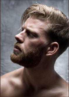 Beautiful Men Faces, Gorgeous Men, Beautiful People, Face Men, Male Face, Michael Stokes, Scruffy Men, Blonde Guys, Awesome Beards