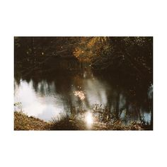 ❤ liked on Polyvore featuring backgrounds, pictures, photos, places and nature