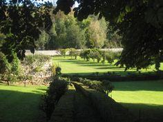 David Austin à l'Abbaye de Morienval - avant que la roseraie de soit plantée...