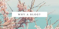 Why a Blog? My first blog post from mostlymotto.wordpress.com