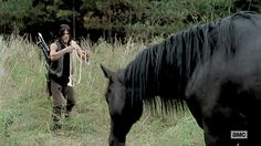 Daryl, looks almost touched, and offers to get the horse... Please read more and join in at: http://allaboutthetea.com/2015/03/08/the-walking-dead-recap-s5e13/