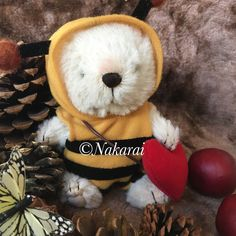 She is 15cms tall. The bear is wearing bee's outfits.