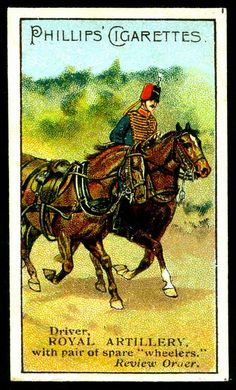 British Army Uniform, British Uniforms, British Soldier, Military Cards, Collector Cards, French Army, Pulp Art, Toy Soldiers, Military History