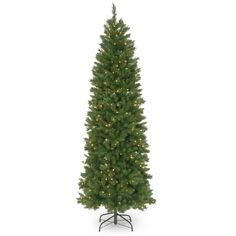 National Tree PNG7-300-75 7 1/2' Pennington Fir Hinged Pencil Tree with 350 Clear Lights