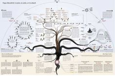 This beautiful poster illustrates yoga's deep roots and many branches.