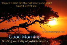 Good Morning. Wishing you a day of joyful moments.
