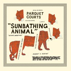 Ecoutez le rock animal et génial de Parquet Courts dans Sunbathing Animal