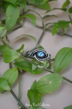 Blue Labradorite Silver Wire Wrapped Ring. Size 8 Ring.