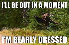 funny-animal-pictures-with-captions-008-018.jpg 620 × 409 bildepunkter