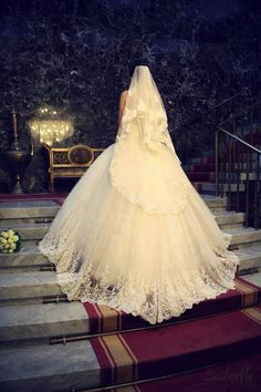 Beautiful gown and vail