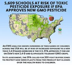 GMO Dow Enlist - And where will 90% of these crops go? To feed the poor animals in factory farms. That means, if you drink conventionally-produced milk or eat meat, you are ingesting these GMOs - just one more reason to support organic agriculture. It also means toxics in the air and water.  Recent controlled animal safety studies do NOT look at long-term, multi-generational effects on these animals who ingest GMOs...   Typically they're on our table long BEFORE they outlive their life span.
