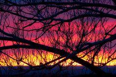 morning color #sunrise #colorado