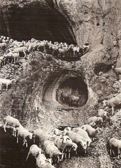 "George Krause, ""The Cave of Sheep"""