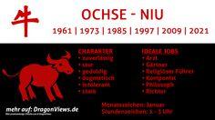 Chinesische Tierkreiszeichen: Ochse - Fakten | © premiumdesign - fotolia.com / DragonViews
