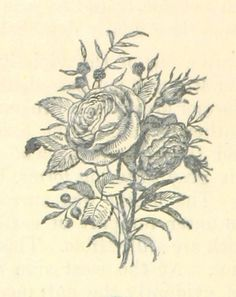 """Image taken from page 88 of 'The Illustrated Scottish Borders. Being a reprint of """"Border Sketches"""" from the """"Hawick Advertiser,"""" etc' 