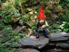 De Legendenroute is leuk voor kids. Een route door de bossen vol elfjes en kabouters | Ardenne All Access