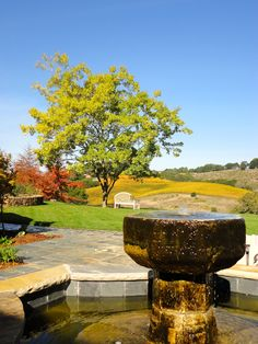 landscape fountain or Fetching Fall Feature