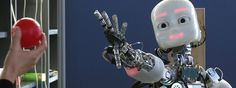 Robot Companions for Citizens. One of the six FET Flagship Projects.