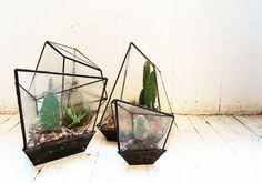 Interieurtrend: planten terrarium (+ 4-stappen HOW-TO)