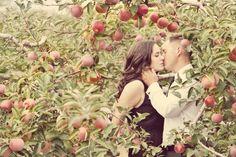 'Apple Orchard Love' by Renaissance Studios