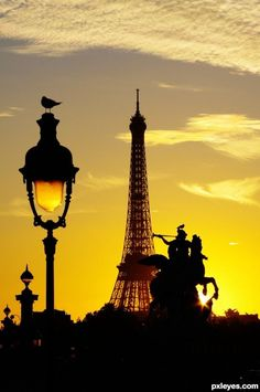 Paris in Black and Yellow