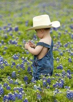Little cowboy in Texas bluebonnets- Mary Barnett Photography