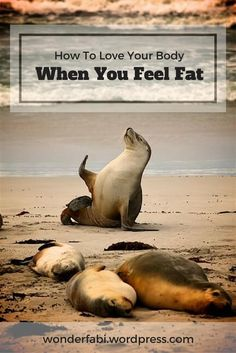 How To Love Your Body When You Feel Fat   Wonder Fabi