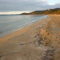 Capanna Civinini beach in Maremma Tuscany - beaches to yourselves in Tuscany