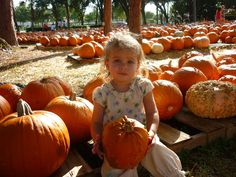 #Pumpkin season is here! This little Knokster picked the perfect pumpkin from the patch :)
