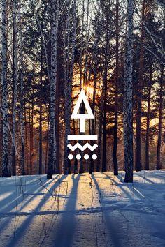 3_TAPPED_Birch_Forest_Logo.jpg