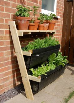I WANT THIS!! But it only comes from the UK... :-(  If space is tight, then your best option is to grow upwards. The Ladder Allotment is a great solution and makes the perfect gift for those who complain about having limited space in their garden.