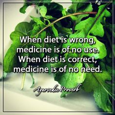 When diet is wrong, medicine is of no use. When diet is correct, medicine is of no need. - Ayurvedic Proverb
