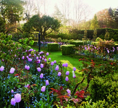 Tulips grow among sculpture and topiary at Pashley Manor Gardens in East Sussex, England | archdigest.com