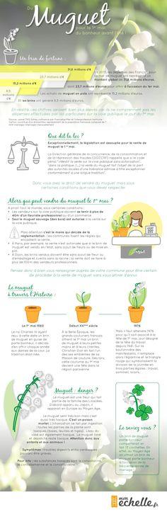 El Conde. fr: La fête du muguet