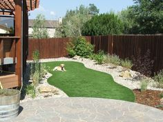 Synthetic Turf Sales and Installation Pet Grass, Low Maintenance Yard, Artificial Turf, Backyard, Patio, Front Entry, Yard Ideas, Colorado, Building