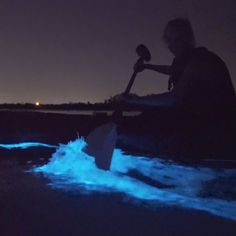 Kayak Tour in Florida You can kayak through bioluminescent water in Florida.You can kayak through bioluminescent water in Florida. Vacation Places, Dream Vacations, Vacation Spots, Vacation Food, Vacation Deals, Vacation Outfits, Places In Florida, Beautiful Places To Travel, Cool Places To Visit