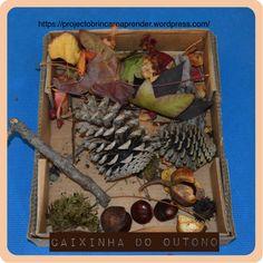 Caixa Sensorial do Outono Reggio Emilia, Preschool, Seasons, Fall, Kids, Painting, Portugal, Cardboard Kids House, Autumn Activities