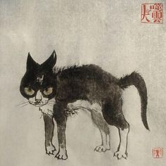 Angry cat is angry! I Love Cats, Cool Cats, Baby Cats, Cats And Kittens, Neko, Angry Cat, Here Kitty Kitty, Beautiful Cats, Cat Art